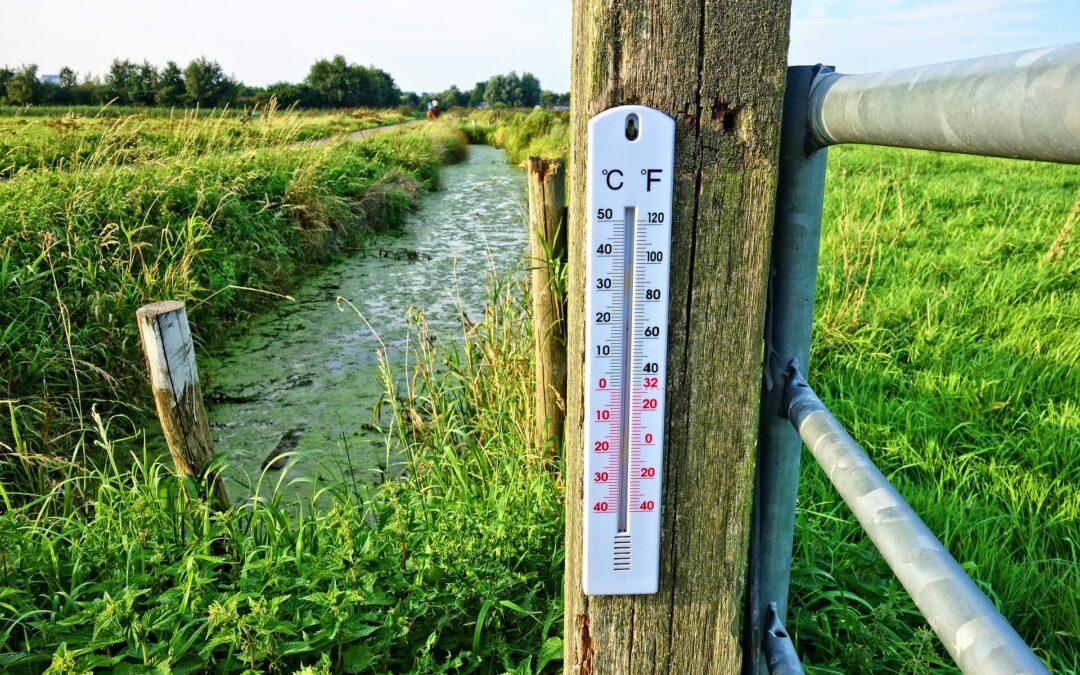 Oprostite, koliko je danas stupnjeva Fahrenheita?